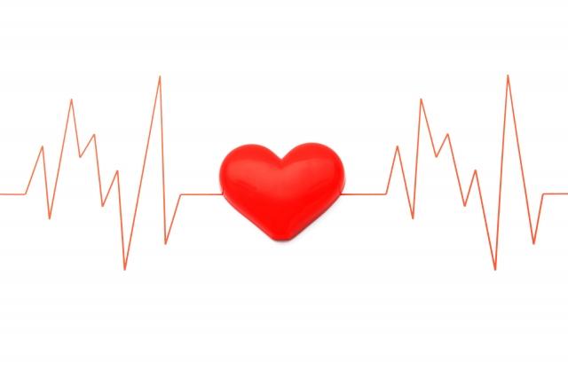 心臓、心電図